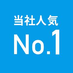 当社人気No.1