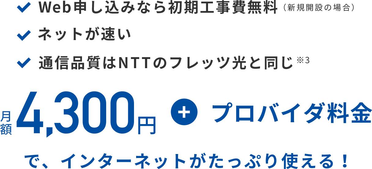 月額4,300円+プロバイダ料金で、インターネットがたっぷり使える!